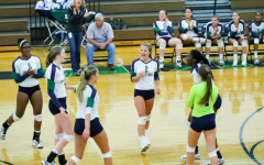 Vollyball team sees another successful season