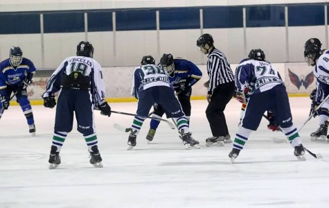 Huskies hope to achieve excellence on the court, in the pool, and on the ice