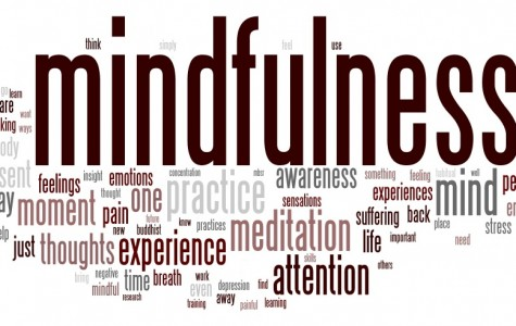 New mindfulness programs help the Flint Hill community manage its anxiety
